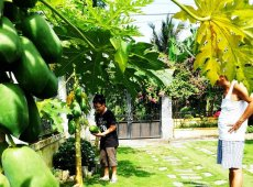Tran Villa | Nhà vườn 1 tầng